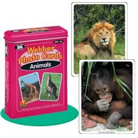 FLASH CARDS ANIMALES 62 UNI. 7,5 X 10 CMS WFC-03