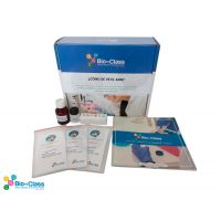 Kit de Biotecnologia escolar: Como se ve el ADN