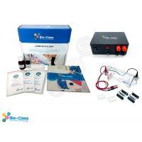 Kit de Biotecnologia escolar: Camara de Electroforesis Pequena mas Fuente de Poder