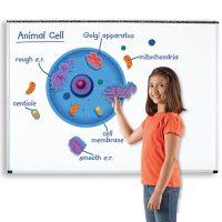 CELULA ANIMAL MAGENTICA GIGANTE 40 CM 6039